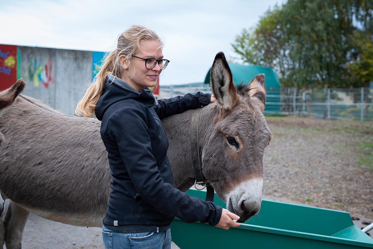 Alternativen zum Zoobesuch: 7 tierfreundliche Freizeitaktivitäten