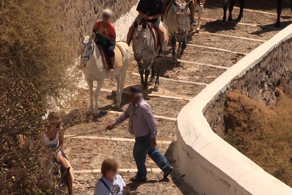 Touristen reiten Esel auf einer Treppe in Santorin