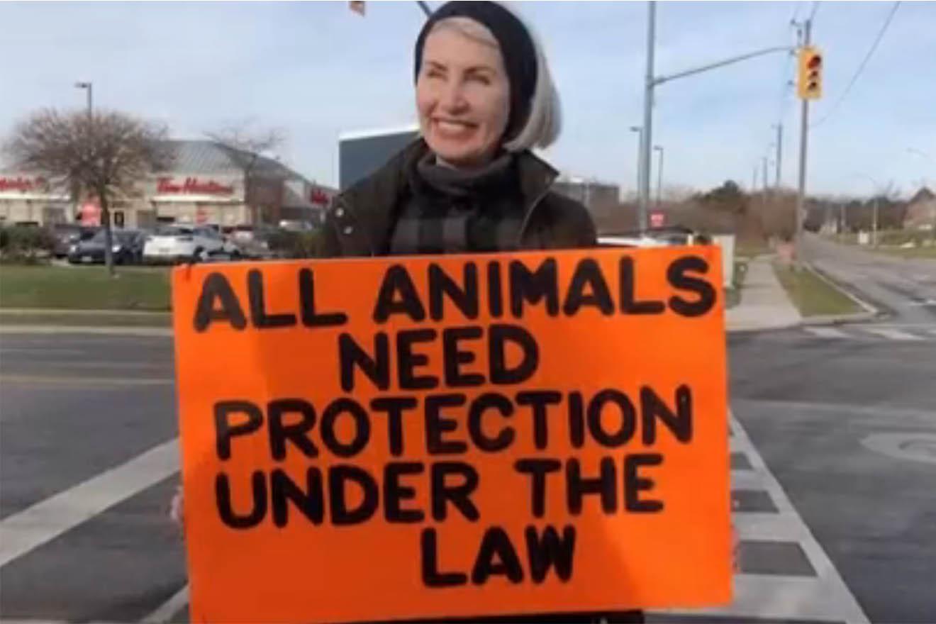 Tierschutzaktivistin Regan Russell von Tiertransporter getötet