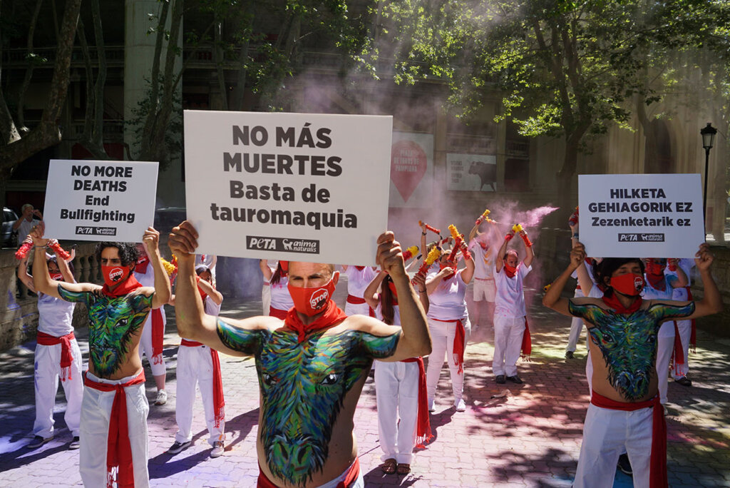 Proteste gegen Stierrennen und Stierkaempfe