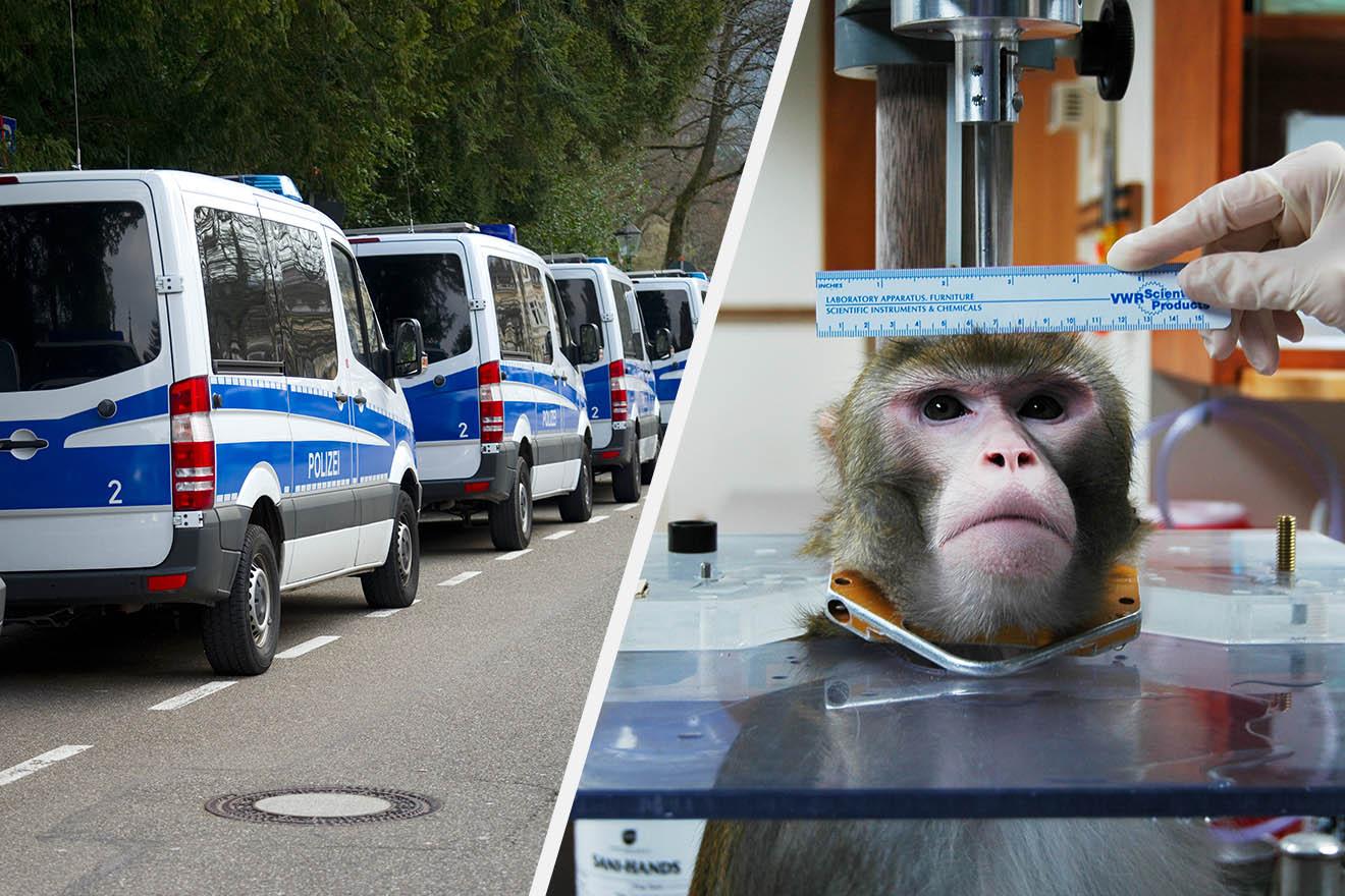 Razzia im Deutschen Primatenzentrum: Wurden Tiere illegal getötet?