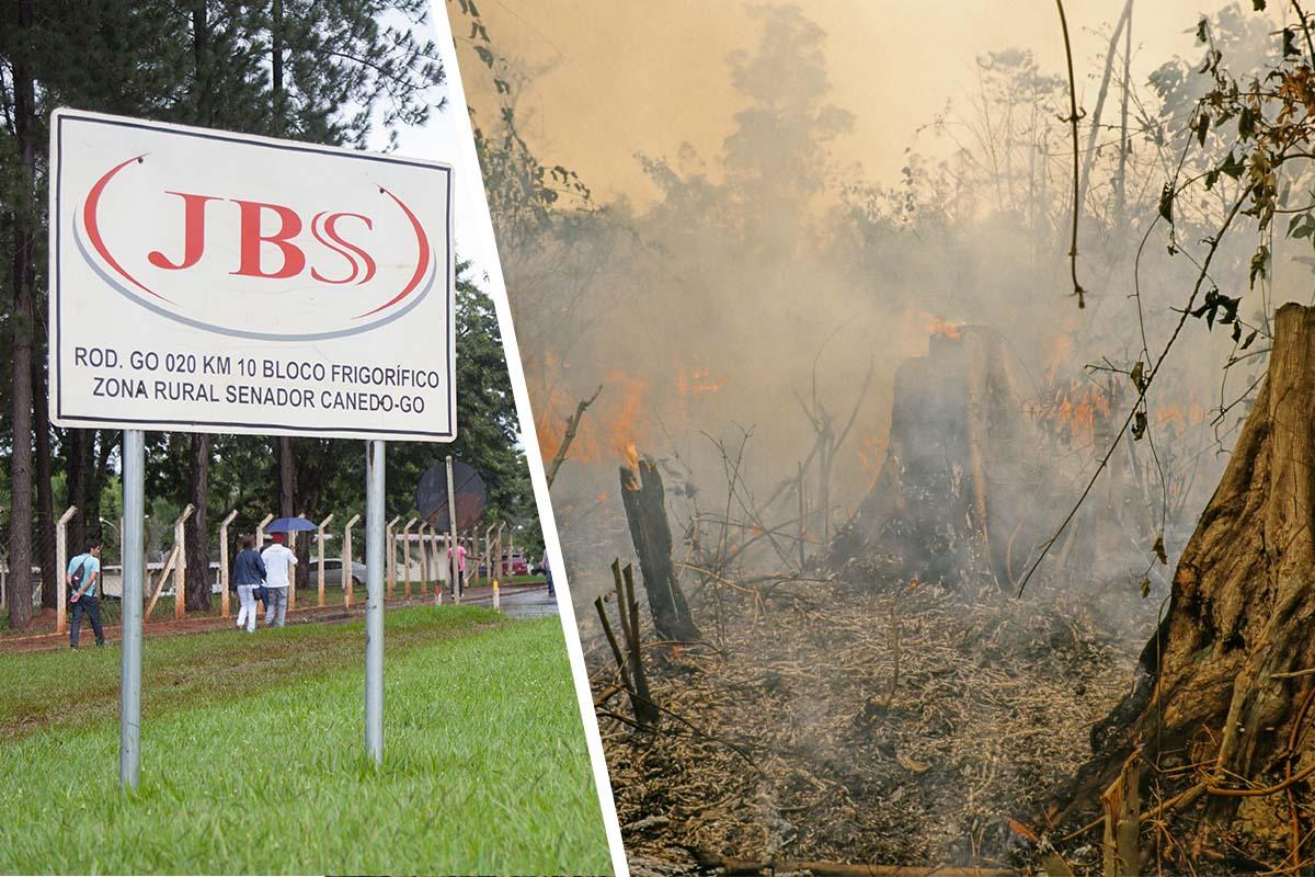 JBS: Wie Schlachtbetriebe Menschen, Tiere und die Natur zerstören