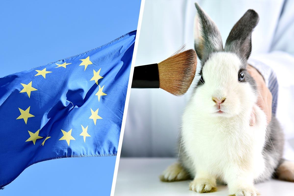 Verteidigung des EU-Kosmetiktierversuchsverbots: PETA und andere Tierschutzorganisationen schließen sich zusammen
