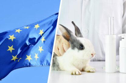 Collage EU Flagge und Hase im Labor