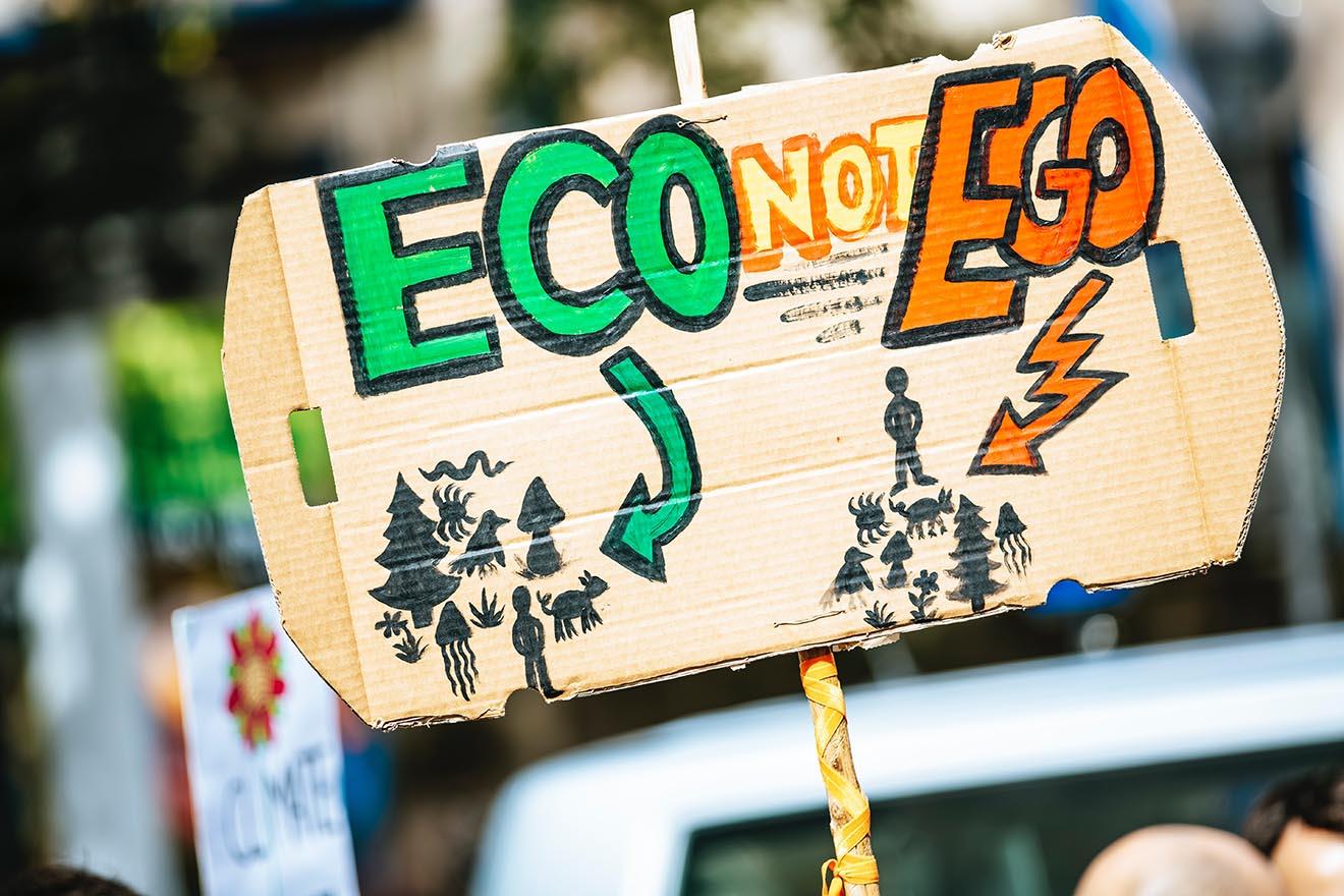 Zum Earth Day: So hängen Tierschutz und Umweltschutz zusammen