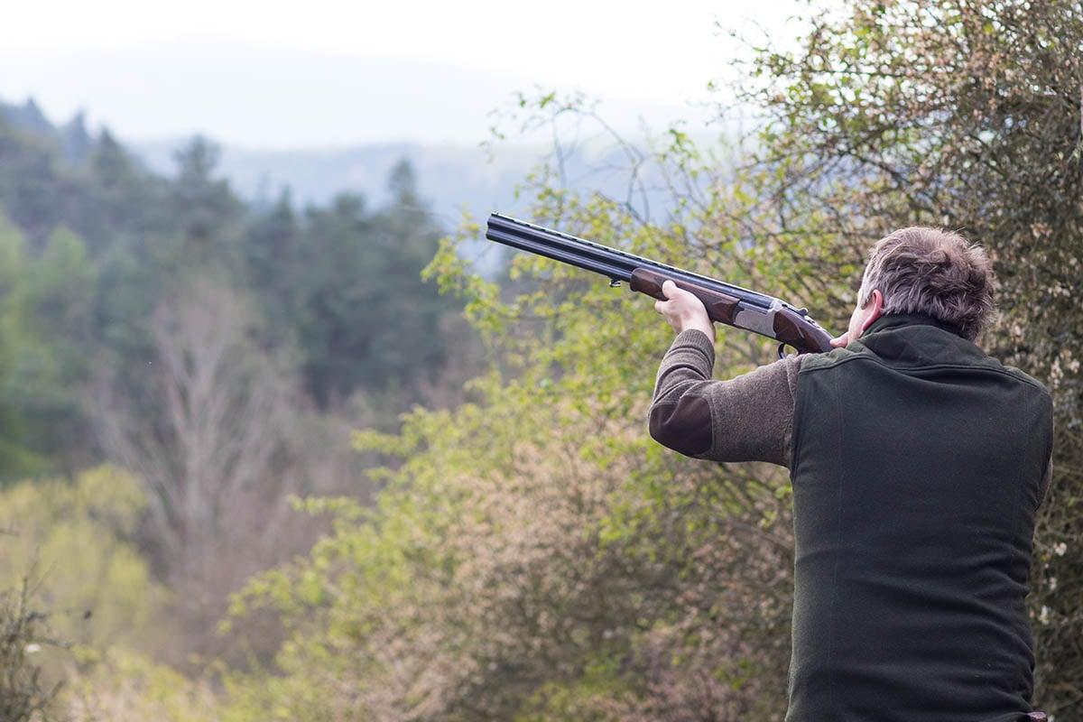 Jagdschein: So leicht erhalten Jäger die Erlaubnis zum Töten von Tieren