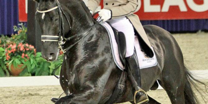 Totilas Pferd mit Reiter