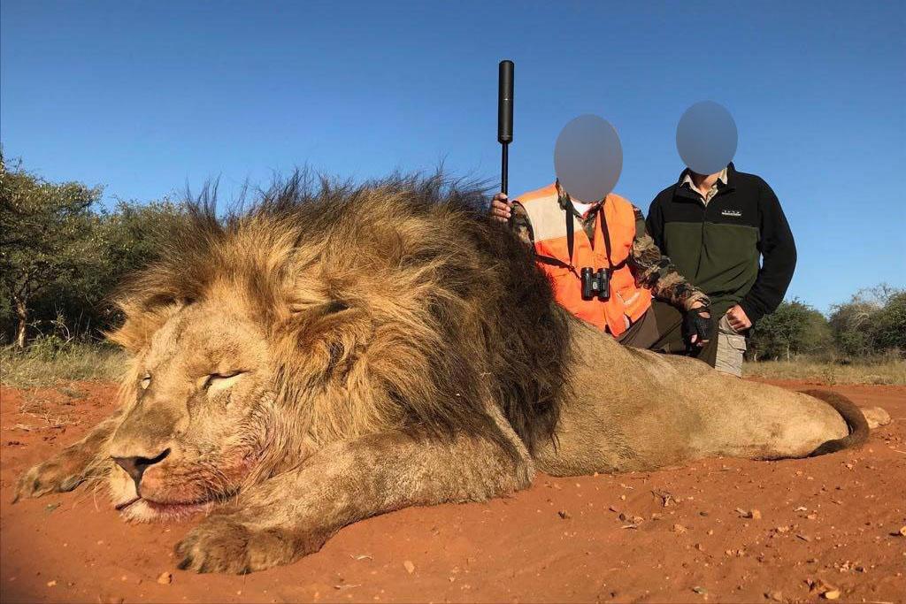 Trophäenjagd: Wenn Jäger reisen, um legal geschützte Tiere zu töten