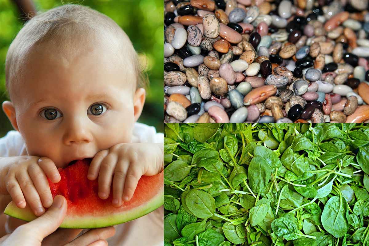 Studie: Vegane Ernährung kann Nährstoffbedarf von Kindern decken