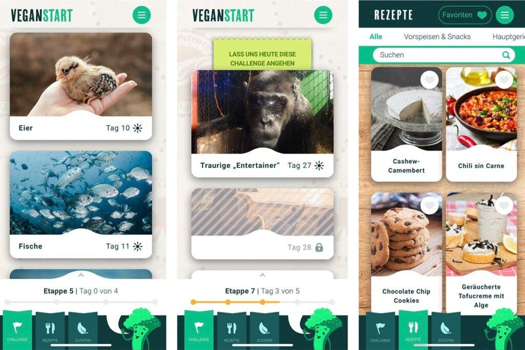 Vegansart App Interface