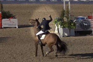 Springreiter schlaegt sein Pferd