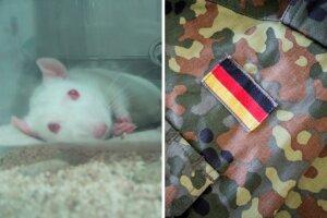 Collage Bundeswehr Tierversuche