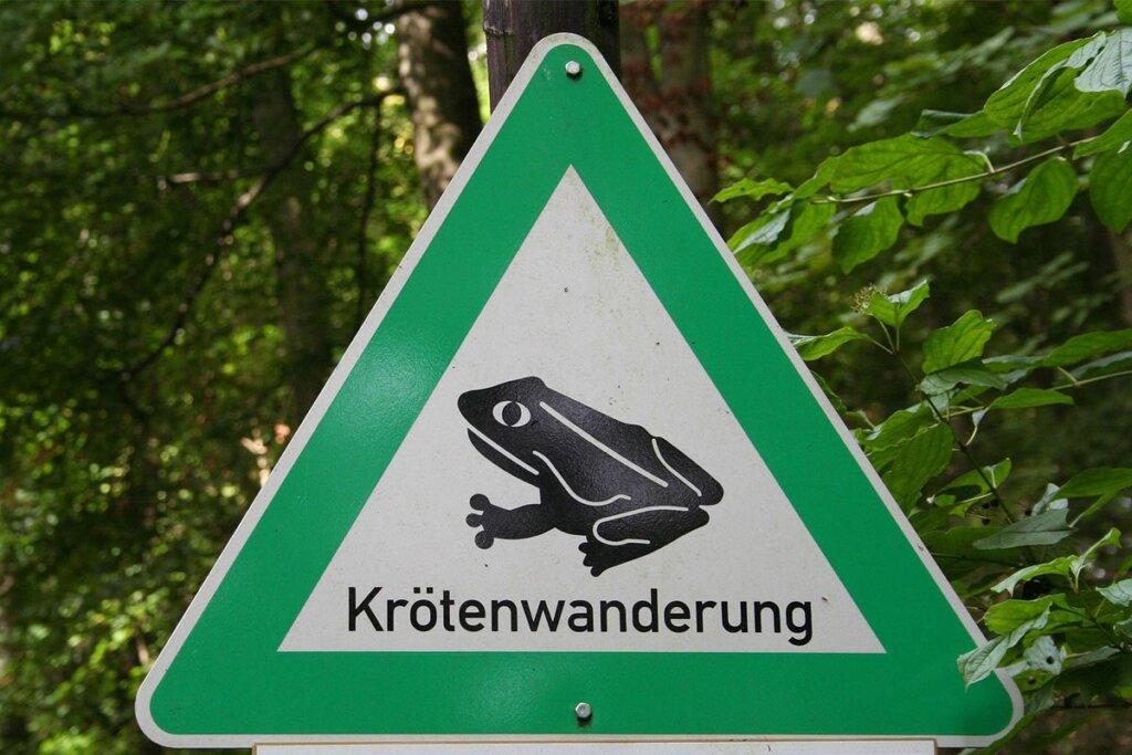 Straßenschild Krötenwanderung
