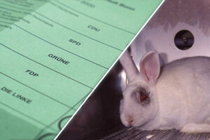 Wahlzettel gegen Tierversuche