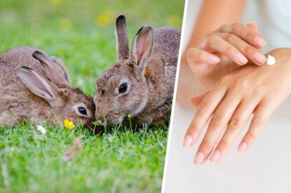 Collage Kaninchen Kosmetik