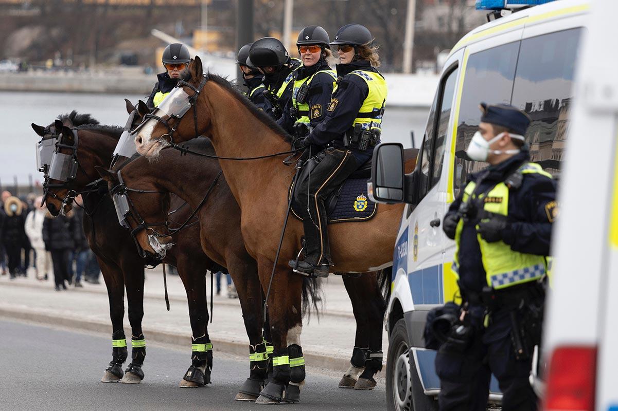 Polizeipferde: So leiden die Tiere bei der berittenen Polizei