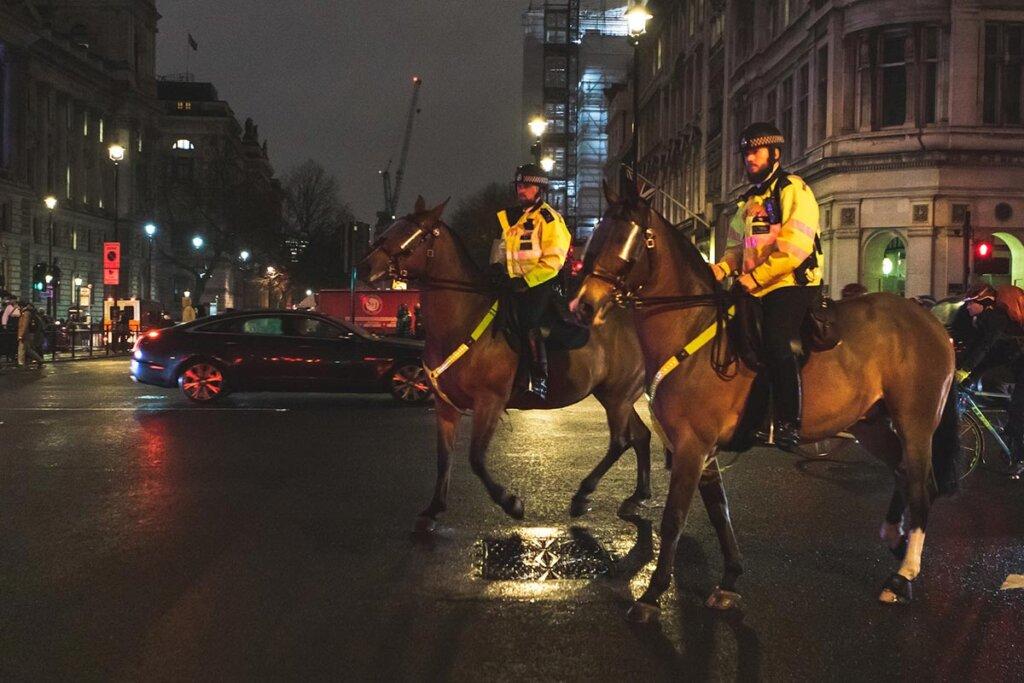 pferde im polizeieinsatz