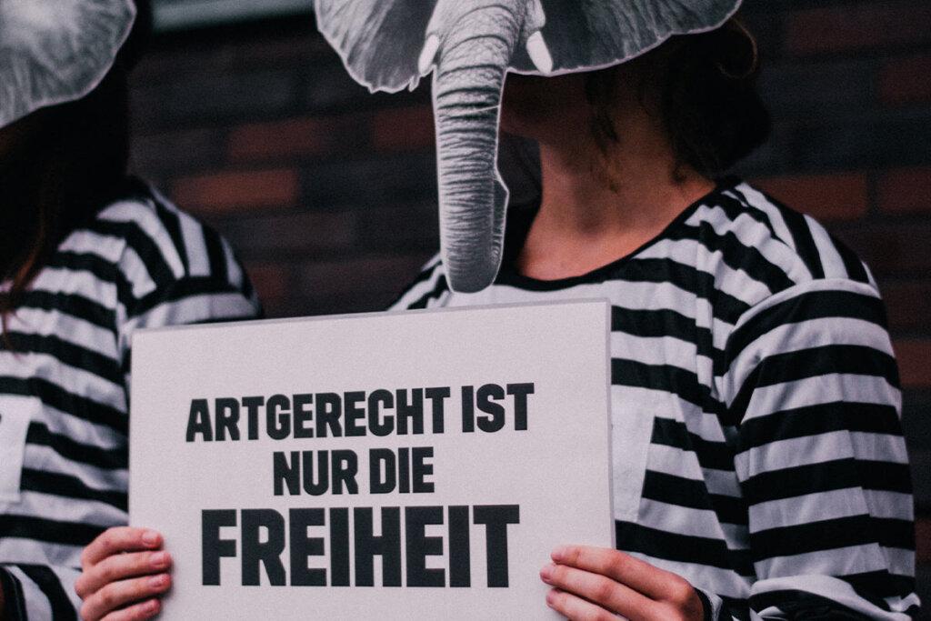 Demonstrant mit Elefantenmaske und Schild