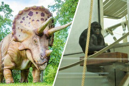 Collage Dinosausier Figur und Affe im Zoo