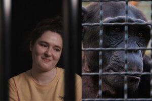 Collage Frau und eingesperrter Affe