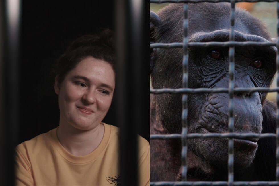 Video: Lebenslang eingesperrt – Alltag für Millionen Tiere im Zoo