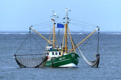 Fischer Kutter auf dem Meer