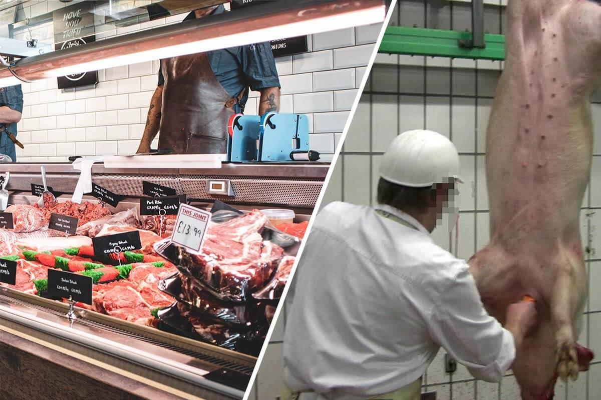 Live-Übertragung aus Tierställen an Fleischtheken: Aufklärung oder Täuschung?