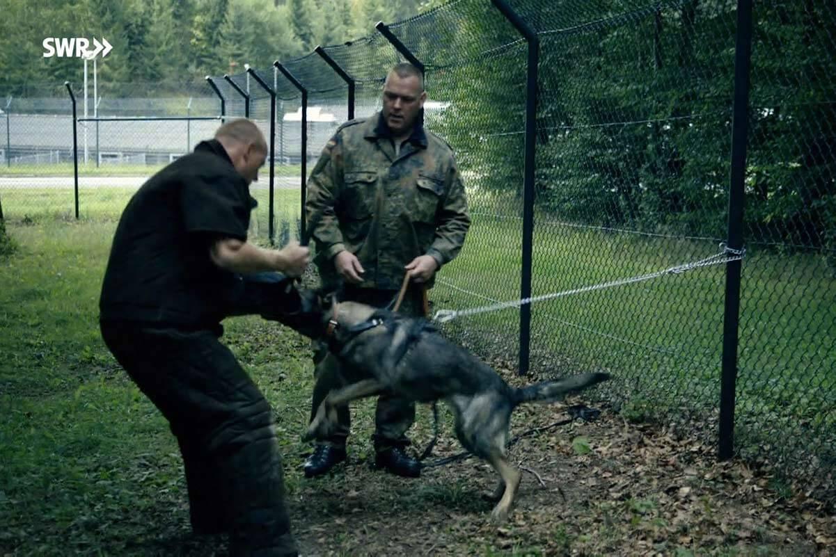zwei soldaten ziehen einen hund