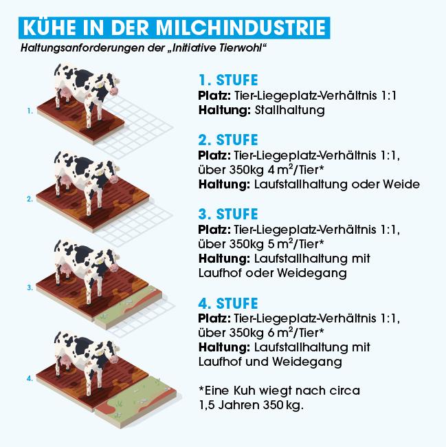 Haltungsform Milchkuehe