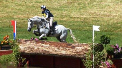 Pferd sprint ueber Hindernis
