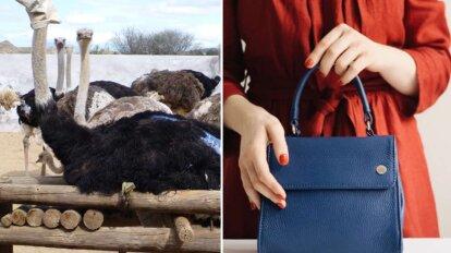 Collage Srausse auf Lederfarm und Handtasche