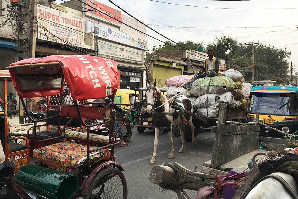 pferde kutsche delhi