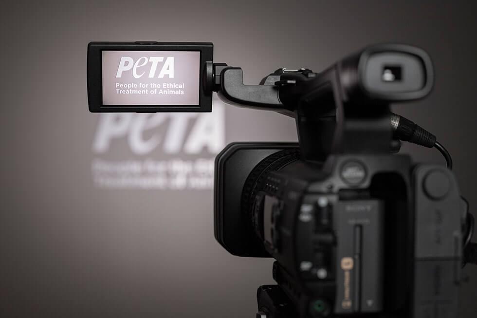 Fachleitung Video /  Video Producer mit Erfahrung  (m/w/d)