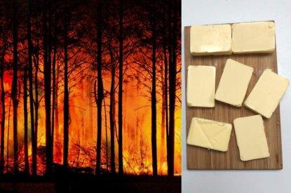 brennende baeume und butter