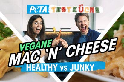 Thumbnail Vegane Testkueche Mac and Cheese