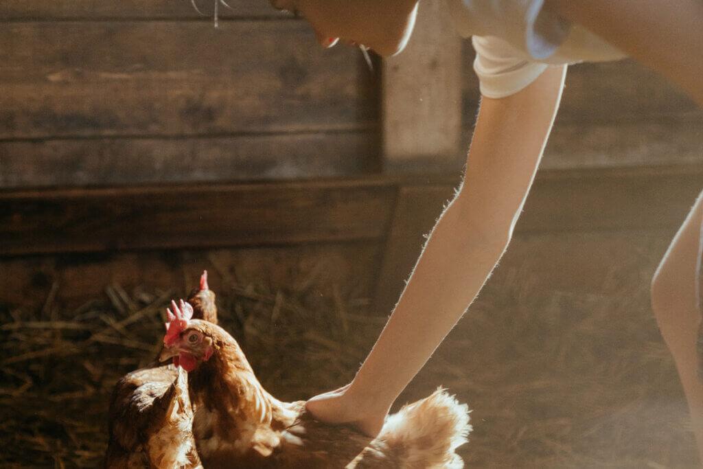 Frau streichelt Huhn