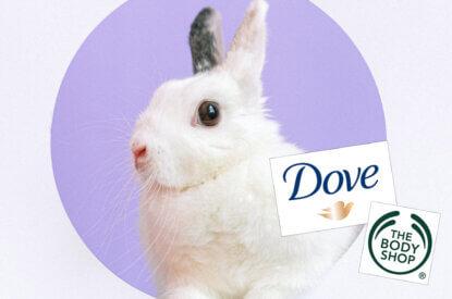Hase und Dove Logo und Bodyshop Logo