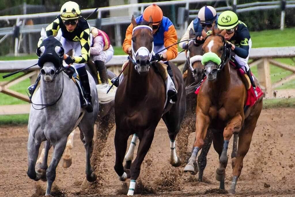 drei pferde werden geritten