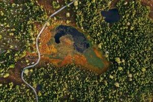 Bayrischer Wald Aufnahme