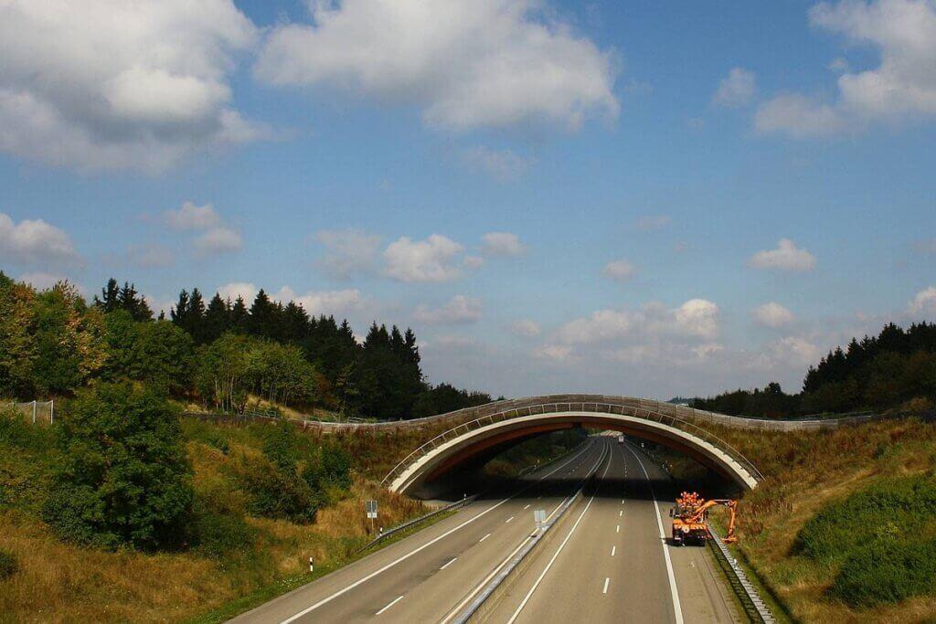 Gruenbruecke ueber Autobahn fuer Wildtiere