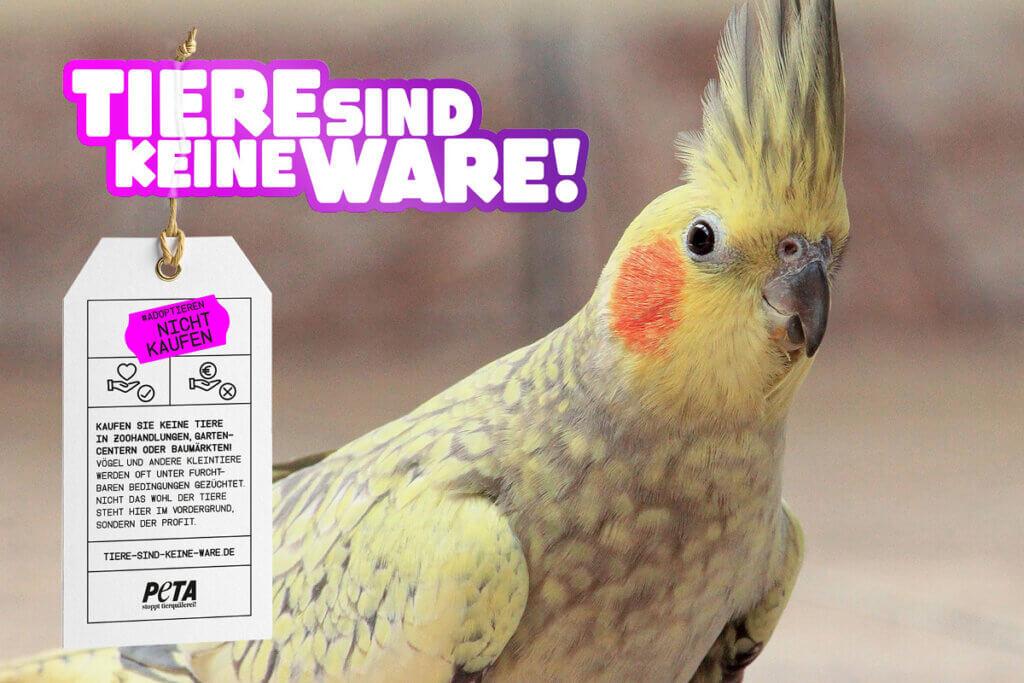 Tiere sind keine Ware Motiv Vogel